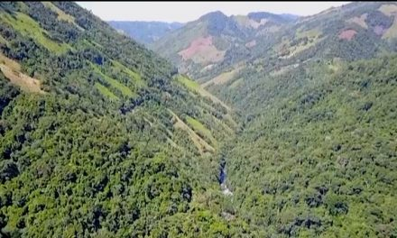 EL CONSORCIO VIAL FASE II SAN FÉLIX GANÓ LA LICITACIÓN PARA PAVIMENTAR 16,5 KILÓMETROS ENTRE SALAMINA Y SAN FÉLIX. LA PROPUESTA ASCIENDE A 21 MIL 635 MILLONES DE PESOS Y QUEDÓ ELEGIDA ENTRE  37 INICIATIVAS