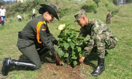 Batallón Ayacucho le apuesta a la recuperación del medio ambiente a través de siembras