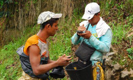 Paisaje Cultural Cafetero, afectado por crisis de cultivadores