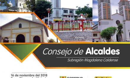CONSEJO DE ALCALDES EN VICTORIA