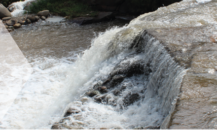 Semana del Agua, una mirada al recurso hídrico