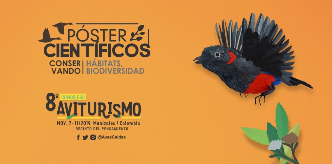 Convocatorias abiertas en el 8° #CongresoAviturismo .:: Póster científicos, Simposio de educación y exposición Aves en el Arte ::.