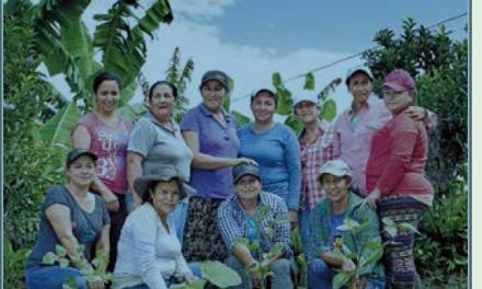 EN PROYECTO SEMBRANDO SOSTENIBILIDAD Mujeres caficultoras, madrinas de la reforestación en Caldas