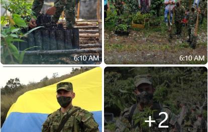 Más de 37 mil árboles ha sembrado el Ejército Nacional en el Eje Cafetero • Para este año, cada Unidad esta comprometida con la siembra de 18 mil árboles, lo que dejaría un total de 108 mil plántulas al finalizar el 2021.