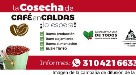 BOLETÍN COMITÉ DE CAFETEROS DE CALDAS  EL COMITÉ DEPARTAMENTAL DE CAFETEROS Y LA DIRECCIÓN EJECUTIVA EJECUTAN EL PLAN COSECHA CALDAS 2° SEMESTRE 2021