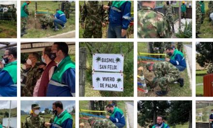 En Caldas el Ejército Nacional continúa comprometido con la reforestación