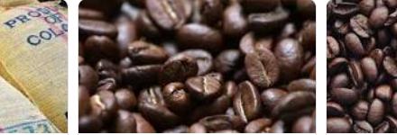 Represamiento en puertos hasta ahora se está terminado de superar  Producción de café de Colombia cae 16% en agosto