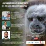 Corpocaldas, Isagen y la Universidad del Tolima lanzan el Atlas Anatómico del Tití Gris